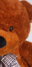 รวมรูปตุ๊กตาหมีจาก เว็บบ้านตุ๊กตา.com