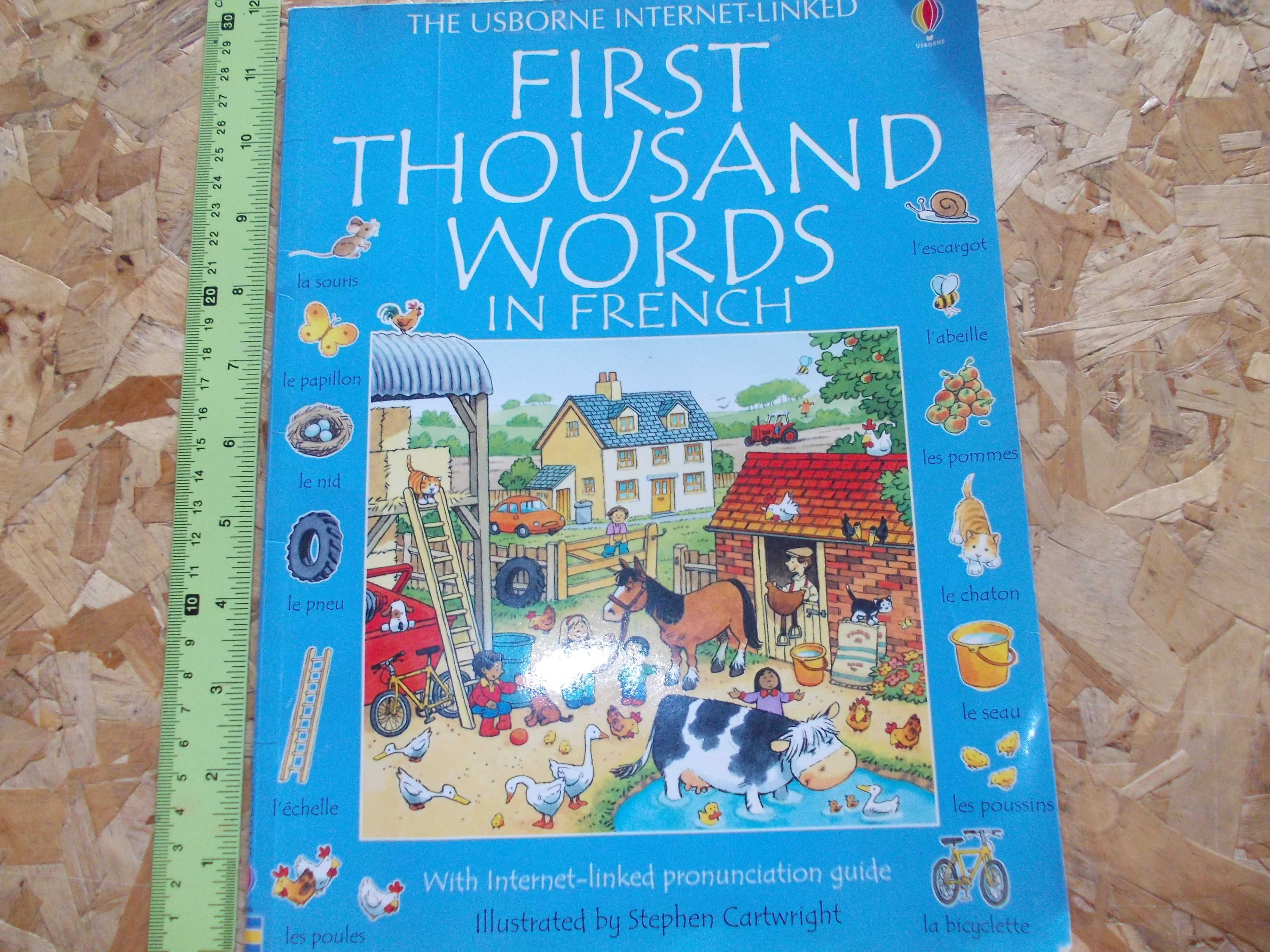 First Thousand Words in French (The Usborne Internet-Linked) (Condition: 65-70%)