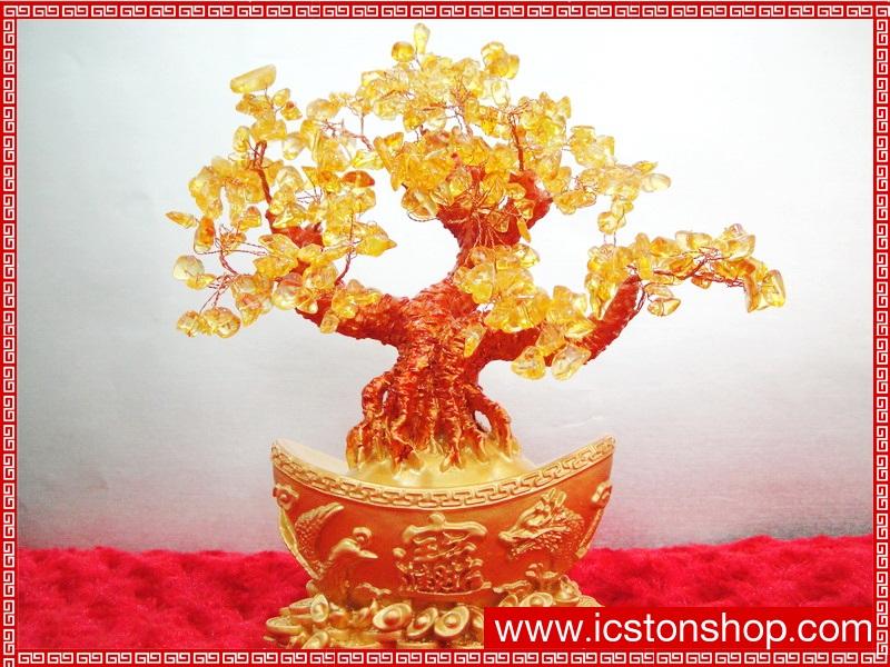▽ต้มไม้มงคลซิทริน Citrine เหรียญจีนทอง (size M)