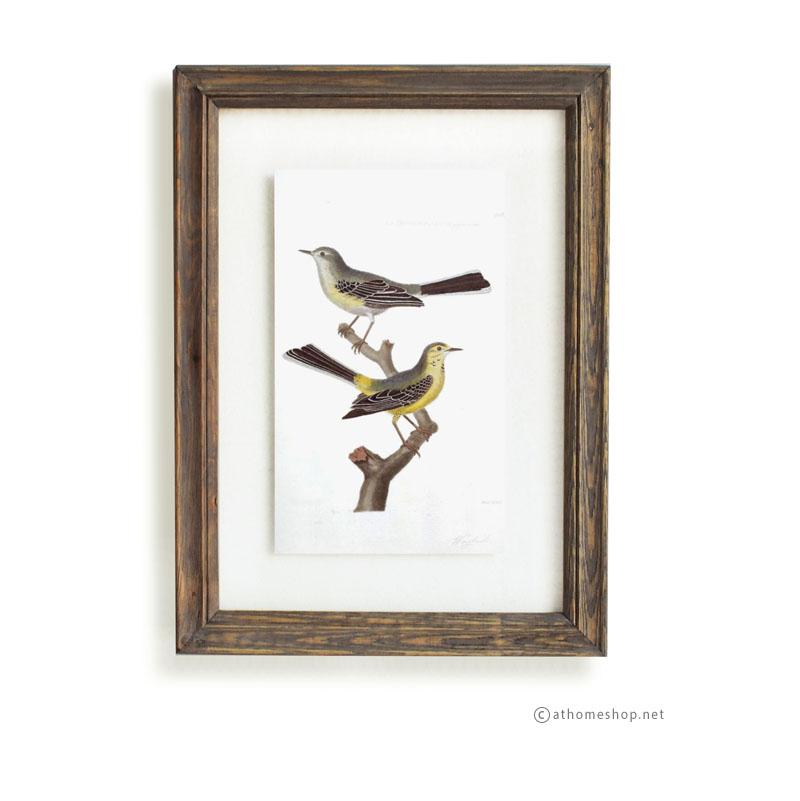 วอลล์อารต์รูปนก กรอบบัวไม้สีเข้มกระจกคู่