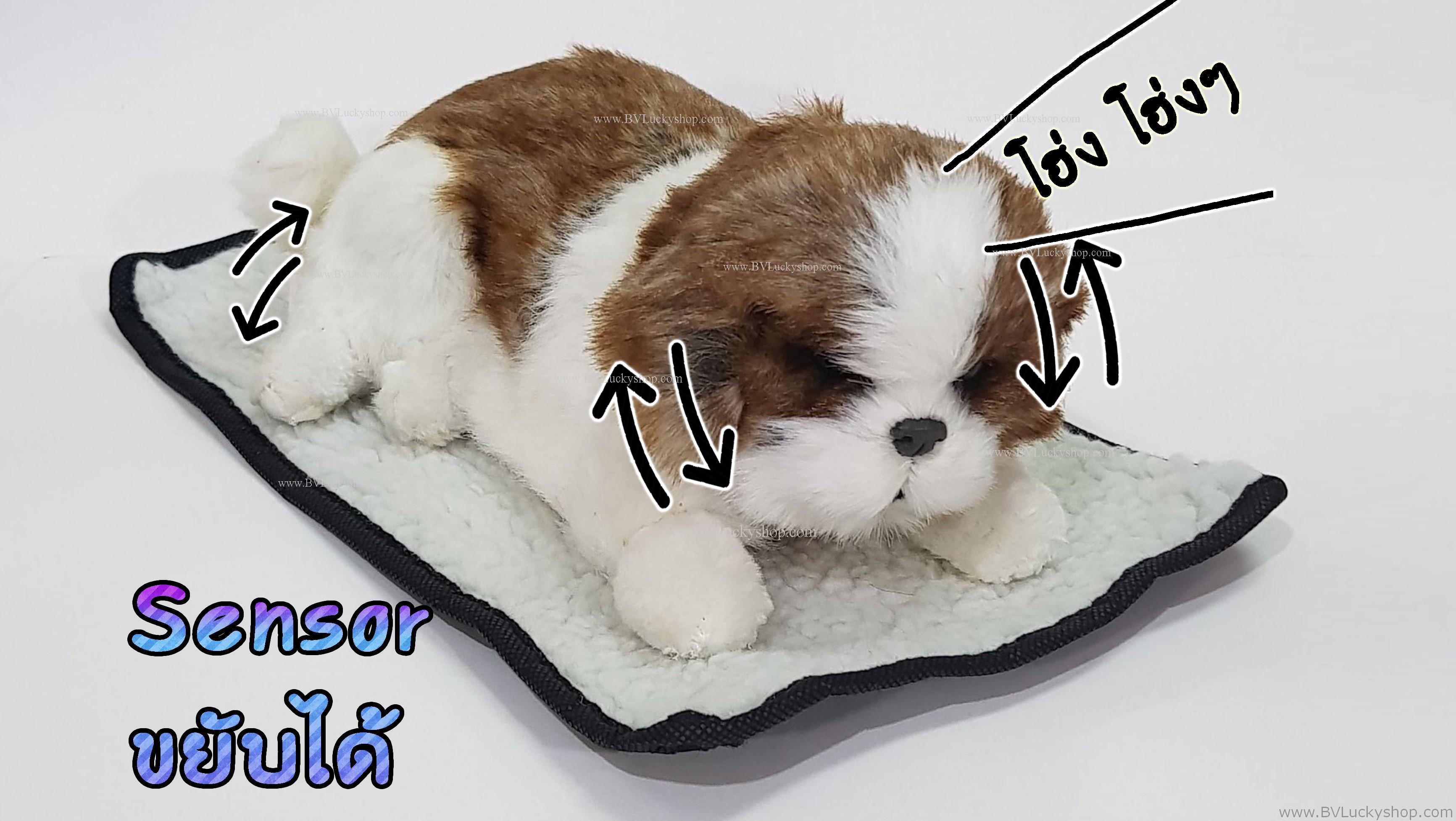 ตุ๊กตาหมา เซ็นเซอร์จับมือผ่าน แล้วส่วนหัวและหางจะเคลื่อนไหว และมีเสียงเห่าด้วย [Dog-SS5]