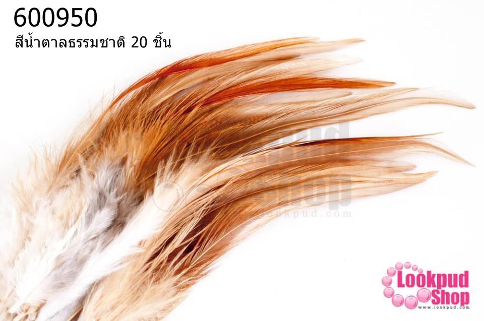 ขนนก (ก้าน) สีน้ำตาลธรรมชาติ (20 ชิ้น)