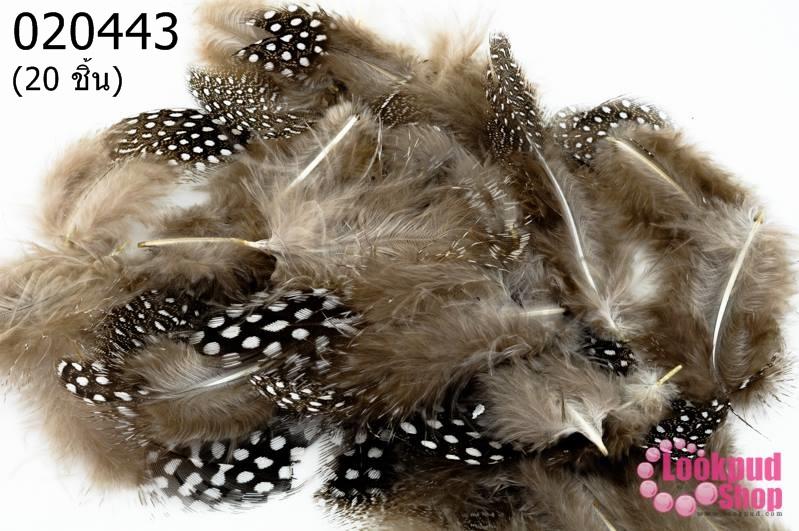 ขนนก สีน้ำตาลธรรมชาติ 20 ชิ้น