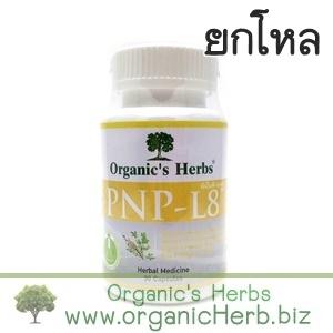 (ยกโหล ราคาส่ง) PNP-L8 Organic's Herbs 30 เม็ด วิตามินบีธรรมชาติ ช่วยกระตุ้นสารสื่อประสาท บำรุงปลายประสาท ลดอาการชา ปลายมือปลายเท้า