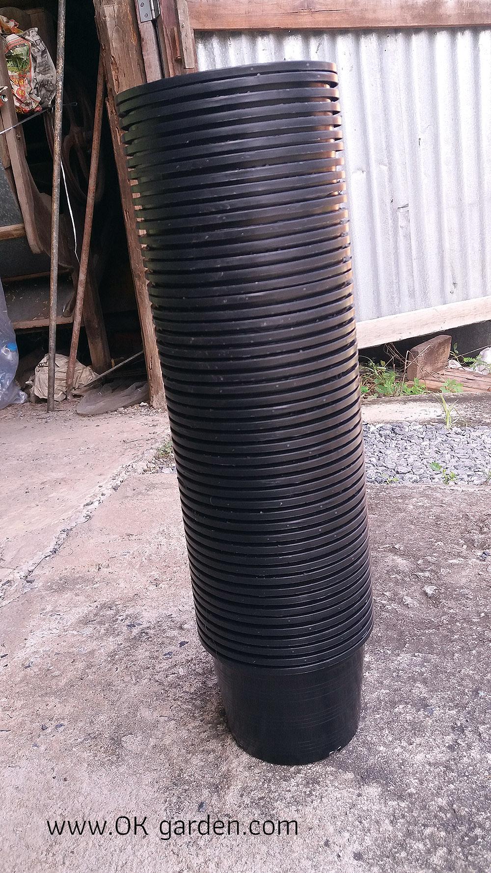 กระถางพลาสติกดำ ขนาด 6 นิ้ว จำนวน 50ใบ