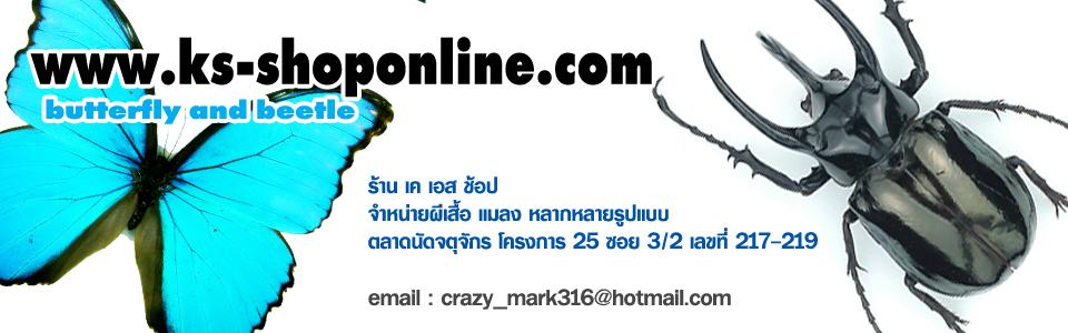KS.Shop Thailand